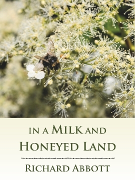 In a Milk and Honeyed Land cover